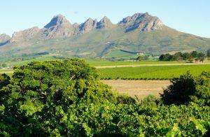 Cape Mountains Above Stellenbosch