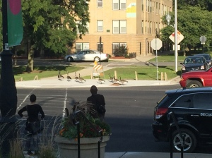 Across the street from The Garfield Conservatory, a block away from the L, a gaggle of geese find their away amid the urban mysteries.
