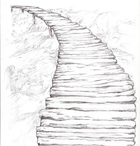 bridge otw